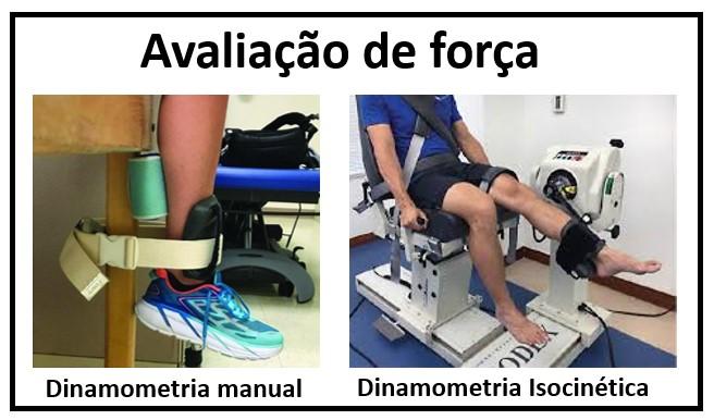 avaliação musculo2